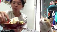 Kucing bersin saat majikan makan. (twitter @sheilashfr)