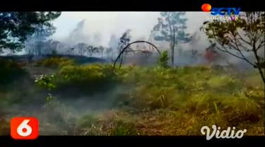 Ratusan hektar kawasan hutan di lereng perbukitan Gunung Welirang, Kabupaten Mojokerto, Jawa Timur, terbakar.