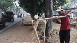 Penjual mengerjakan pohon pinang untuk lomba memanjat dalam rangka menyemarakkan HUT Kemerdekaan RI yang dijual di kawasan Tanjung Barat, Jakarta, Kamis (8/8). Batang pinang itu dijual dengan harga mulai dari Rp 700ribu. (Liputan6.com/Herman Zakharia)