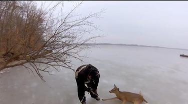 Sebuah perusahaan kamera terkenal yang mengunggah video tentang penyelamatan rusa yang terjebak di danau es.Salah seorang penyelamat hewan yang tergerak hatinya saat  melihat postingan  sebuah media social tentang beberapa rusa yang terjebak di tenga...