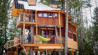 Ingin pergi liburan? Menginap di sebuah rumah pohon mungkin bisa jadi pilihan yang tepat. (Foto: Instagram @mttreehouseretreat/@wheeliecreative)