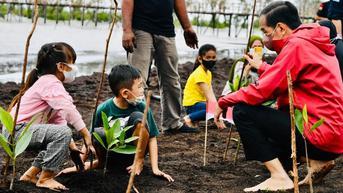 Menteri LHK: Kerusakan Mangrove Seluas 600.000 Ha, Rehabilitasi Akan Dilakukan Sampai 2024