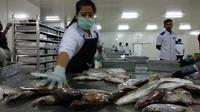Pegawai Perum Perikanan Indonesia (Perindo) Unit Natuna, Kepulauan Riau, tengah mengolah ikan hasil tangkapan nelayan lokal.
