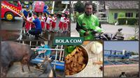 6 Pekerjaan sampingan unik pemain sepak bola Indonesia. (Foto Dok Bola.com dan Liputan6.com)