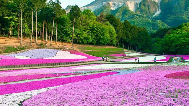 45 Koleksi Gambar Pemandangan Alam Tidak Berwarna Gratis Terbaik