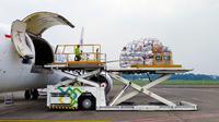 PT Cipta Krida Bahari (CKB Logistics), anak usaha PT ABM Investama Tbk (ABM), mulai menambah jadwal layanan cargo freighter dari Jakarta menuju Timika.