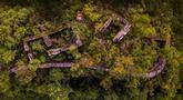 Foto dari udara pada 29 Juni 2020 menunjukkan sisa-sisa peninggalan kompleks desa kuno di Minzhu, sebuah kota di Wilayah Langao, Provinsi Shaanxi, China. Terletak di daerah pegunungan di Gunung Bashan, peninggalan kompleks desa tersebut berasal dari masa Dinasti Ming (1368-1644). (Xinhua/Tao Ming)