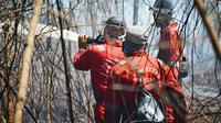Personel BBKSDA Riau memadamkan kebakaran lahan di Giam Siak Kecil. (Liputan6.com/M Syukur)