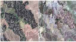 Citra satelit DigitalGlobe pada 20 Desember 2017 (kiri) dan 13 Februari 2018 (kanan) di Desa Myin Hlut, 25 km tenggara Maungdaw, Rakhine, Myanmar. Pemerintah Myanmar mengklaim mereka berusaha membangun kembali wilayah yang hancur. (DigitalGlobe via AP)