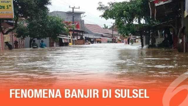 Menurut BMKG banjir yang terjadi di Sulawesi Selatan adalah akibat hujan lokal yang cukup lebat.