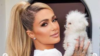 Top 3 Berita Hari Ini: Paris Hilton Pakai Gaun dari Tisu Toilet Jelang Nikah, Tetap Terlihat Mahal