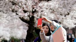 Wisatawan berswafoto dengan latar belakang bunga sakura yang bermekaran pada hari pertama musim semi di kampus Universitas Washington, Seattle, Selasa (20/3). Festival Cherry Blossom tahun ini berlangsung dari 20 Maret sampai 15 April (AP/Elaine Thompson)