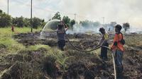 Lahan gambut yang sudah ditanami sawit itu terbakar sejak Senin lalu, tapi pemiliknya belum juga diketahui. (dok. Humas Polda Riau/M Syukur)