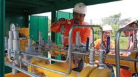 PGN telah berhasil menyalurkan gas bumi kepada PT Berkah Kawasan Manyar Sejahtera (BKMS), pengelola kawasan JIIPE di Manyar Gresik.