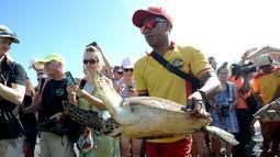 Turis menyaksikan kura-kura hijau dilepaskan di pantai Kuta di pulau Bali (27/3). Sekitar 18 kura-kura hijau diburu untuk diambil dagingnya dan dilepaskan kembali ke laut setelah polisi menangkap pelaku di Kabupaten Gianyar pada 13 Maret. (AFP Photo/Sonny Tumbelaka)
