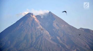Berstatus Waspada, Begini Penampakan Gunung Merapi