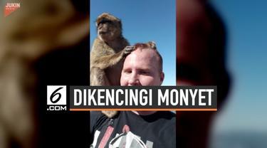 Seorang turis mengalami hal memalukan. Ia menjadi bahan tertawaan orang di sekitarnya gara-gara seekor monyet.