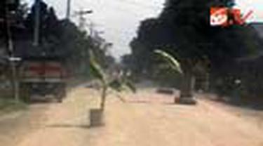 Ratusan warga Desa Beringin, Deli Serdang, Sumut, memblokir jalur utama menuju PT Angkasa Pura dengan menanam pohon pisang dan ban bekas.