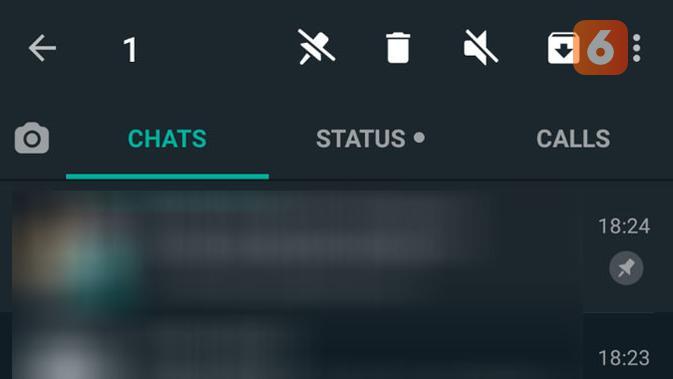 Tips WhatsApp agar chat di aplikasi selalu tampil diurutan paling atas. (Liputan6.com/ Yuslianson)