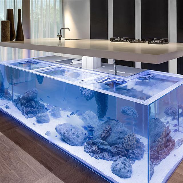 Menakjubkan Meja Dapur Ini Ditopang Oleh Akuarium Besar Lifestyle Liputan6 Com