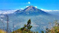 Gunung Sindoro, Temanggung, Jawa Tengah (kameradroid.com)