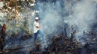 Kebakaran lahan di Riau mengepulkan asap setelah didinginkan petugas. (Liputan6.com/M Syukur)