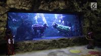 Pengunjung mengabadikan atraksi barongsai dan liong dalam air bertajuk The Battle of Yin Yang di Aquarium Utama Seaworld Ancol, Jakarta, Senin (12/2). Atraksi ini akan berlangsung pada 16-18 Februari. (Liputan6.com/Arya Manggala)