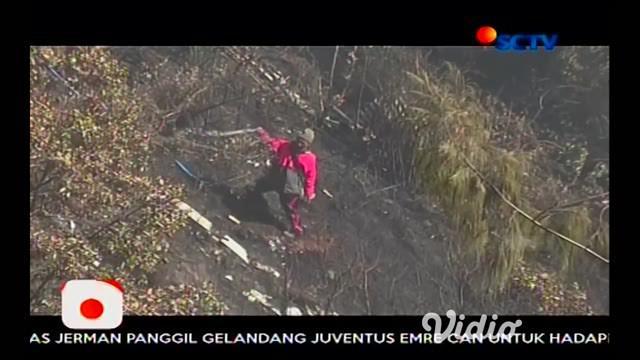 Hutan Lereng Gunung Bromo jalur wisata penanjakan, Pasuruan, Jawa Timur serta Hutan Taman Nasional Gunung Merapi, Magelang terbakar.