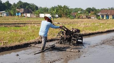 Lampung Selatan Segera Punya Perda Lahan Pertanian dan Pangan Berkelanjutan