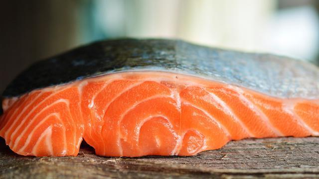 Ilustrasi Salmon