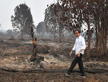 anpa Masker, Jokowi Tinjau Lokasi Kebakaran Hutan di Pekanbaru