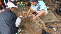 Warga Cipinang memanfaatkan banjir untuk menangkap ikan, Selasa (25/2/2020). (Nanda Perdana Putra/Liputan6.com)