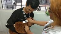 Seekor anjing sedang dipindai usai melakukan pemasangan microchip di tubuhnya (Liputan6.com/Giovani Dio Prasasti)
