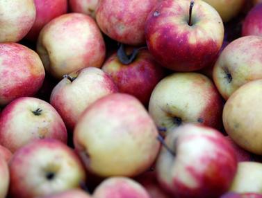 20150707-Yuk Coba! 6 Makanan yang Bisa Mengatasi Bau Mulut saat Puasa 1