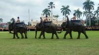 Gajah Sumatera ikut upacara (Liputan6.com / M.Syukur)