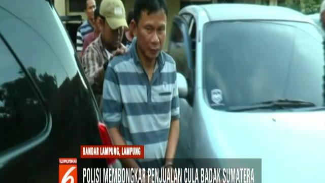 Polisi juga menangkap enam tersangka, satu di antaranya adalah oknum TNI berpangkat sertu yang bertugas sebagai babinsa di Bengkulu.