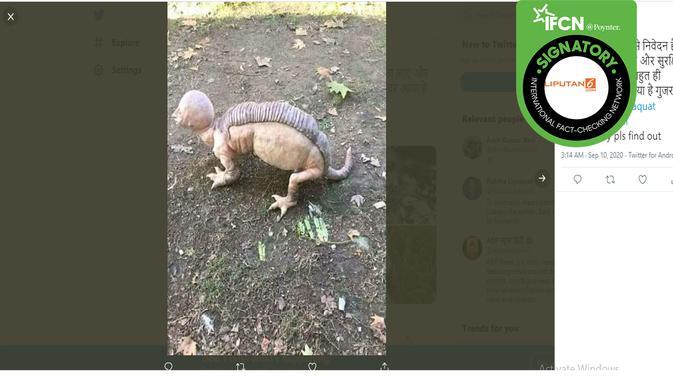 Hoaks hewan berkepala manusia. (Twitter/Amit Kumar Vani)