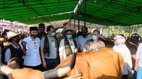 Mentan Syahrul Yasin Limpo melakukan panen 800 ekor pedet (sapi) beserta induknya di Desa Barabali, Kabupaten Lombok Tengah, NTB. (Dok Kementan)
