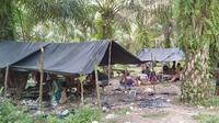 Suduk, pondok beratap terpal yang menjadi tempat tinggal Orang Rimba di Desa Bukit Suban, Kecamatan Air Hitam, Sarolangun, Jambi. (Liputan6.com/Gresi Plasmanto)