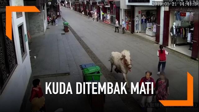 Seekor kuda yang digunakan untuk upacara pernikahan berlari di sepanjang jalan Kota Huangshan, China dan melukai tiga orang. Kuda akhirnya ditembak mati oleh polisi dan pemilik kuda ditangkap.
