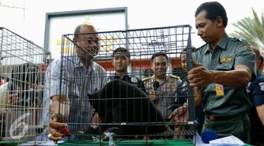 Direktorat Kriminal Khusus Polda Metro Jaya berhasil membongkar sindikat jual beli satwa dilindungi dan menangkap enam tersangka, Jakarta, Rabu (18/11). Polisi juga menyita barang bukti sedikitnya 8 satwa yang dilindungi. (Liputan6.com/Yoppy Renato)