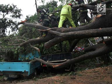 Petugas kepolisian bersama unsur masyarakat  berupaya melakukan proses pemotongan pohon besar yang tumbang akibat Hujan dan Angin di wiliyah Serua, Ciputat, Rabu (12/12). (merdeka.com/ arie basuki)