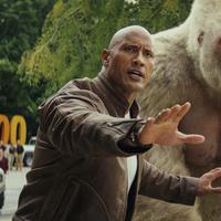 Aktor Dwayne Johnson alias The Rock berjalan bersama seekor gorila dalam adegan film Rampage. (Warner Bros via AP)