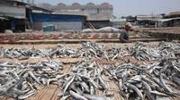 Pekerja saat menjemur ikan asin di Muara Angke, Jakarta, (4/12). Hal tersebut di sebabkan karena pasokan bahan baku mulai turun setelah Kementerian Kelautan dan Perikanan mengeluarkan sejumlah peraturan baru. Liputan6.com/Angga Yuniar