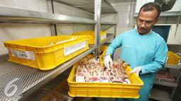 Petugas mengecek kondisi kantong darah di kantor PMI DKI Jakarta, Jumat (24/6). Meskipun terdapat penurunan, namun stok darah di Ibu Kota relatif aman selama Ramadan dengan jumlah sekitar 800-1.500 kantong perhari. (Liputan6.com/Immanuel Antonius)