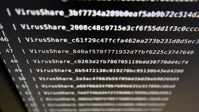 Malware (DAMIEN MEYER / AFP)