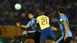 Striker Uruguay, Luis Suarez, berusaha melewati hadangan pemain Ekuador dalam laga Kualifikasi Piala Dunia 2018 di Montevideo, Jumat (11/11/2016) pagi WIB. (AFP/Pablo Porciuncula Brune)