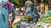 Pedagang menyiapkan barang-barangnya untuk ditukarkan dengan barang lain di pasar barter di Togoville, 24 November 2018. Setiap hari Sabtu di pantai utara Danau Togo, sekitar 65 km timur ibu kota, Lome, berlangsung tradisi pasar barter. (Yanick Folly/AFP)