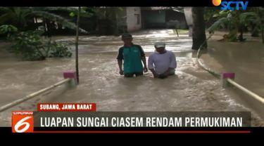 Ratusan hektare tanaman padi milik petani pun kini terancam rusak akibat banjir.