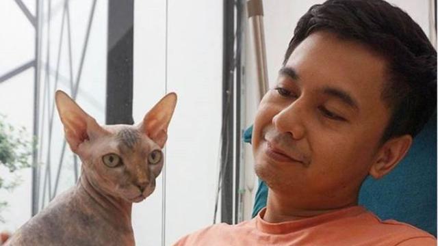 6 Artis Tanah Air Ini Pelihara Kucing Yang Harganya Fantastis Bisa Beli Rumah Hot Liputan6 Com